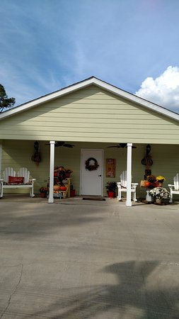 Theodore, AL: A real treat of an RV park outside of Mobile Al.  Fall flowers throughout, swings and  hammock t