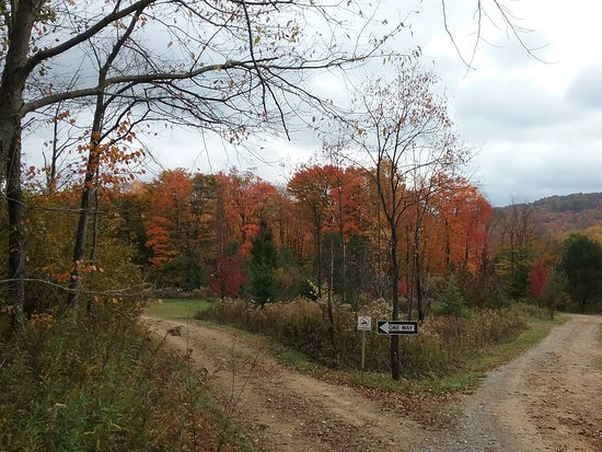 Marienville, PA: Campground entrance with direct access to A TV and snowmobile trails