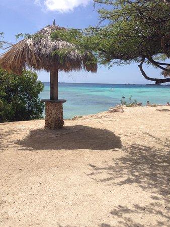 Savaneta, Aruba: Mango Halto