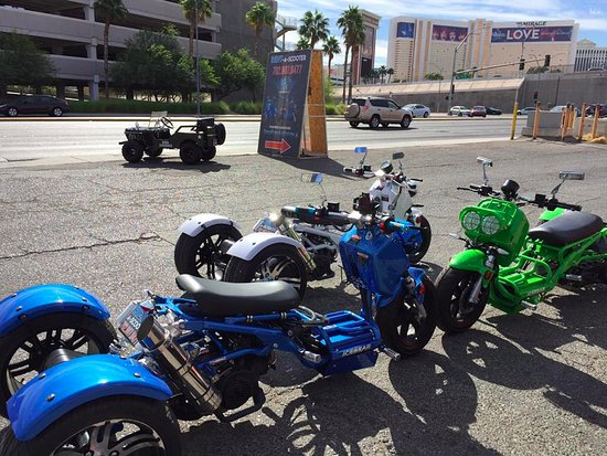 Scooter Rentals Picture Of Scooter Rentals And Tours Las Vegas