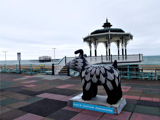 Brighton Beach: one of the Snowdogs that are raising money for the Martlets Hospice. This one on the seafront.
