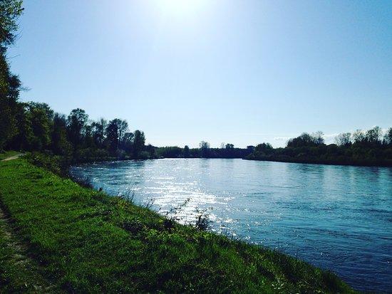 Salem, OR: Early spring river walk