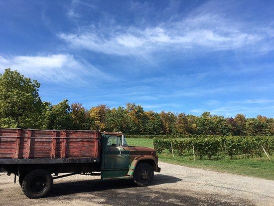 Seneca Lake Wine Trail: photo9.jpg