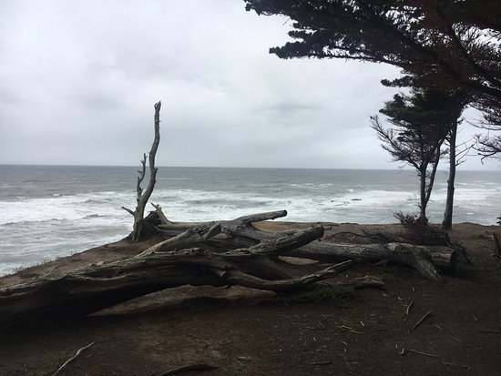 Moss Beach, Californien: View from Cliff edge - beautiful easy walk from Inn through well groomed cypress forest. 100 yar