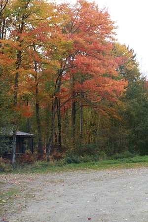 Jeffersonville, VT: Main driveway though property