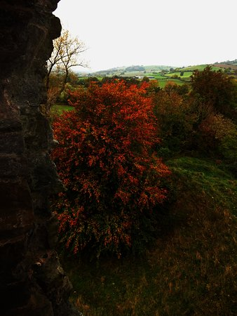 Clun, UK: A bit of autumn