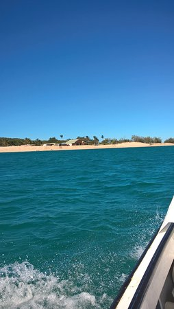 Great Keppel Island, Australië: Putney from the boat back from our stay in paradise at Svendsen's Beach Eco Retreat.