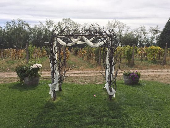 Chino Valley, AZ: Outdoor image of the grounds at Granite Creek Vineyards