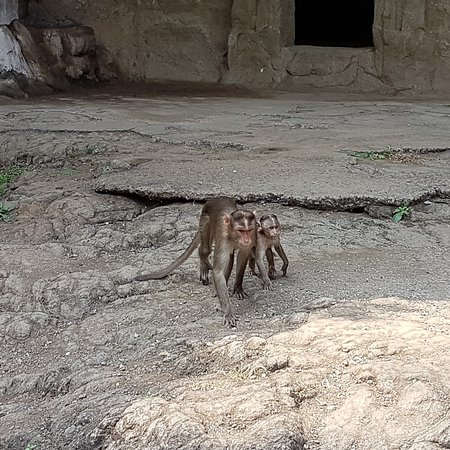 Elephanta Caves: IMG_20161028_102951_large.jpg