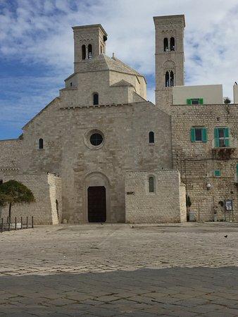 Duomo di Molfetta - Parrocchia San Corrado: ....