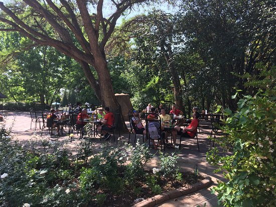 Valverde Country Hotel : Seat outside under the tree for a yummy breakfast or a romantic candlelit dinner
