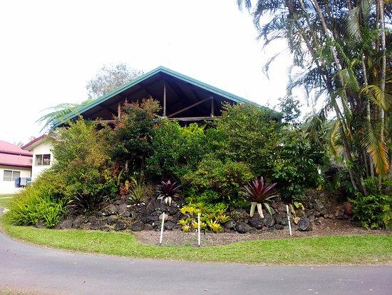 Atherton, ออสเตรเลีย: Camp Kitchen garden