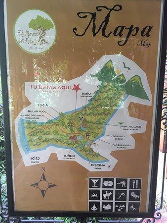 El Abrazo del Arbol: photo2.jpg
