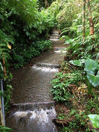 Puri Lumbung Cottages: photo0.jpg