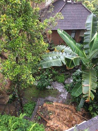 Puri Lumbung Cottages: photo1.jpg