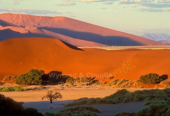 Namib-Naukluft Park, Namibia: The stunning Sossusvlei in the Namib Desert of Namibia at sunset