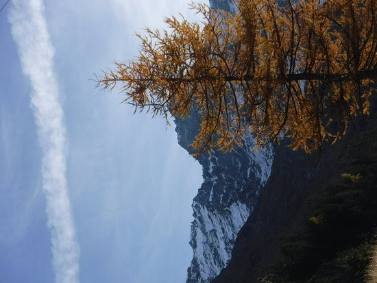 Le Chable, Switzerland: Hikes in the Haut val de Bagnes nature reserve!