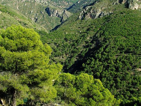 Red de Senderos de la Sierra de Gádor en Berja