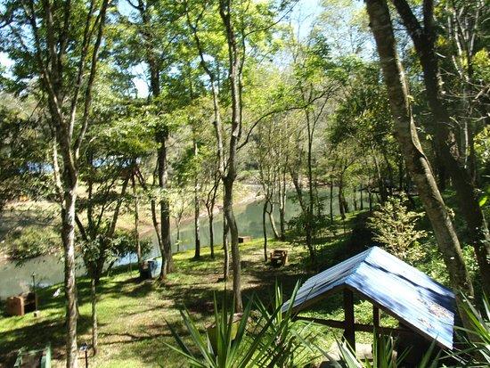 Caraguatay Foto