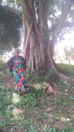 Butere, كينيا: Butere