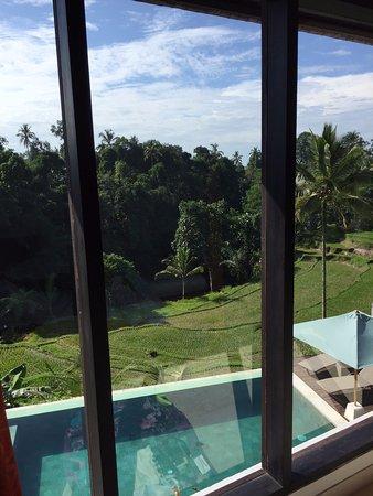 Serenity Ubud Villas: view from bedroom