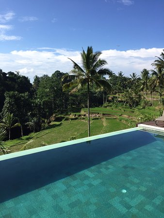 Serenity Ubud Villas Photo