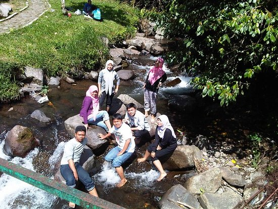 pemandangan hijau picture of pondok halimun sukabumi tripadvisor