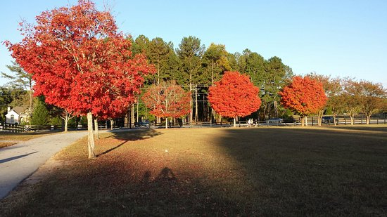 Snellville, GA: Fall is beautiful at this park!