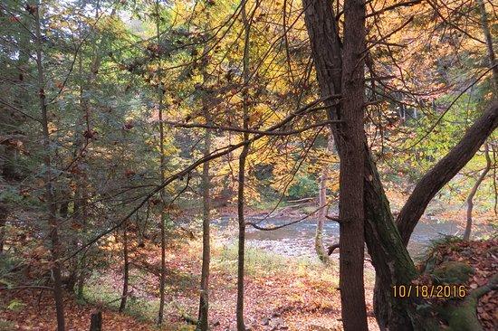 Portersville Photo