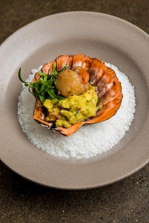 Bazzar: Vieira Da Ilha Grande Com Abacate E Toque De Baunilha • Ilha Grande Scallop With Spicy Avocado C