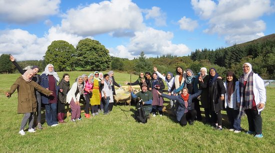 Annamoe, Ireland: UCD ISoc girls after successfully herding sheep!
