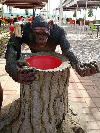 Sun n Sand Holiday Resort: This sink is in the shape of a chimpanzee that vomits water into your hands.