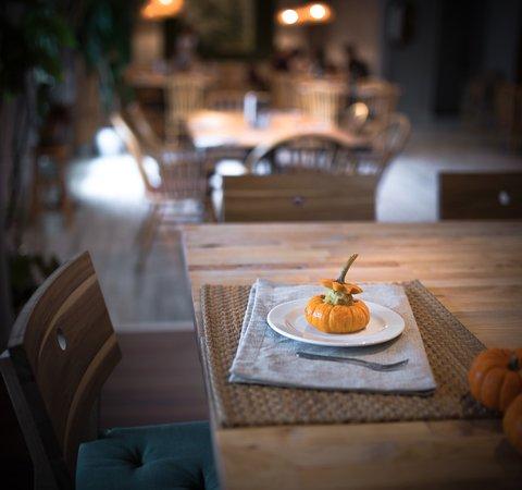 เดนตัน, เท็กซัส: Boo! It's Pumpkin Custard!