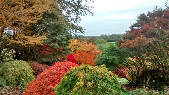 The Garden House: October colours