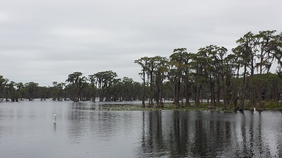 Lakeland, GA: Banks Lake