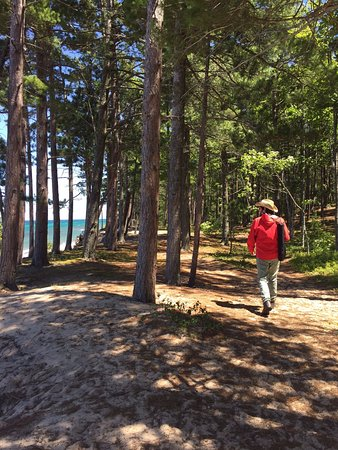 12-Mile Beach: Between the campsites and the beach on the way to the stairs.