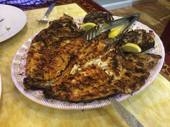 turkish diwan restaurant grilled fish