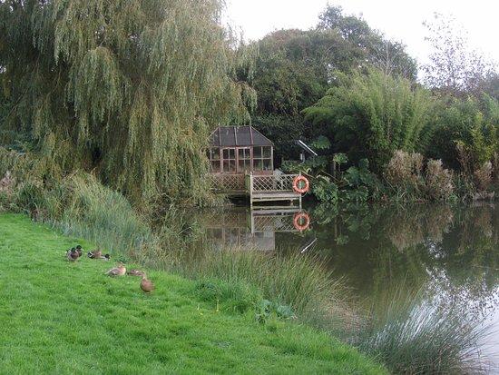 Rudge Farm Cottages: Pond