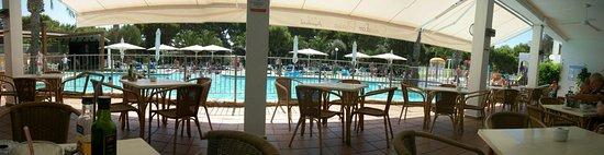 Apartamentos Cala d'Or Playa: Breedbeeld zwembad uitzicht vanaf het terras