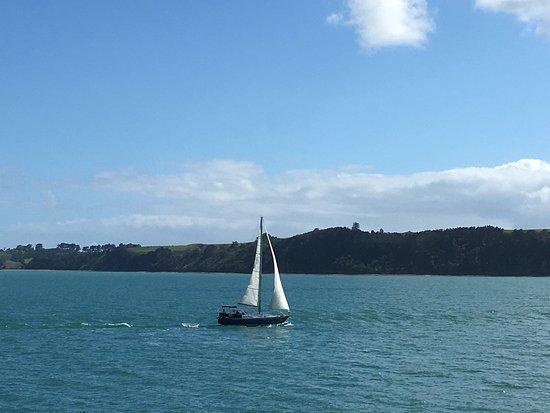 Isla Waiheke, Nueva Zelanda: photo3.jpg