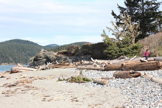 Oak Harbor, WA: Beach near DP state park