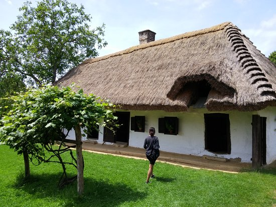 An old thatched house in Pityerszer