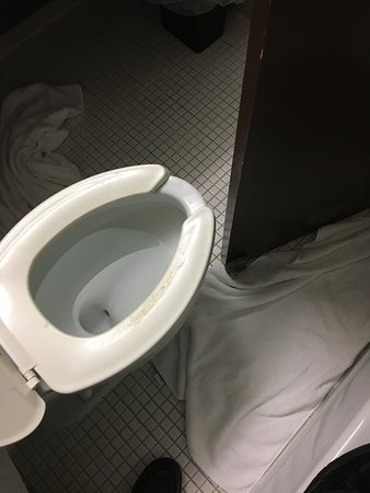 Holiday Inn Sarnia Hotel & Conf Center: door almost hits toilet when opening, need to stand in bath tub to open