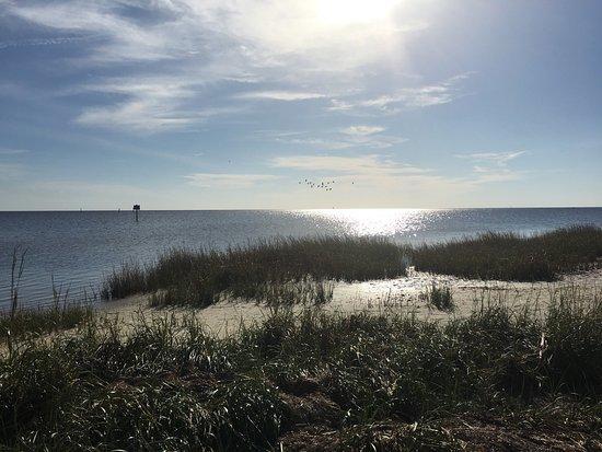 Perry, FL: photo3.jpg