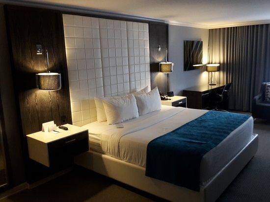Westminster Hotel : 20161025_114107_large.jpg