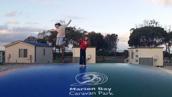 Marion Bay Caravan Park : Kangaroo Jumper