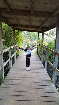 The Forest of Marston Vale - Forest Centre: Great afternoon out