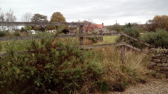Fadmoor, UK: Housekeeper's home at Willow Cottage 50 metres away