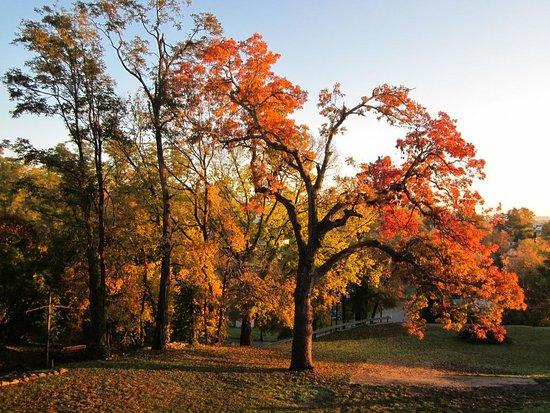 Rockcliffe Mansion: Natural beauty