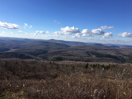one of the views from the top picture of spruce knob riverton